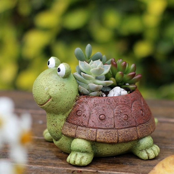 16 Creative DIY Succulent Turtle Tutorial 12